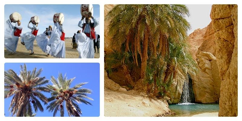 Approfondimento i festival del sud tunisino press for Sinonimo di veloce